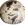 Fin Cretácico - 75 millones de años.